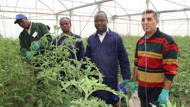 Chuka University's Demo Farm will Advance Arid Climate Agriculture